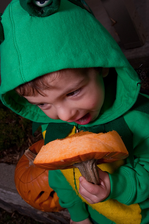 A small child enjoys the top of a jackolantern at Halloween