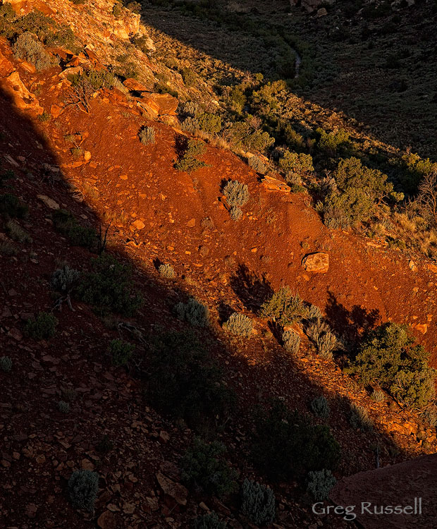 Sunrise on a ridge in Capitol Reef National Park, Utah