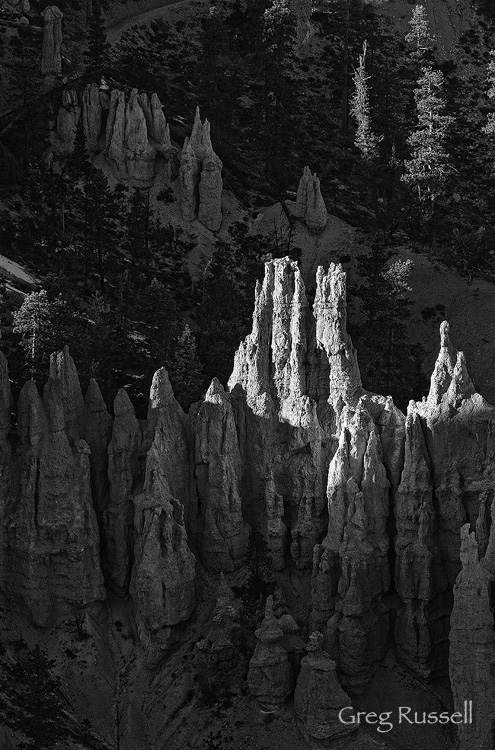 Hoodoos in late afternoon light, Bryce Canyon National Park, Utah