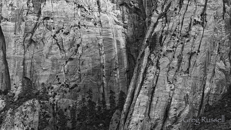 A sandstone cliff in the Kolob Terrace area of Zion National Park, Utah