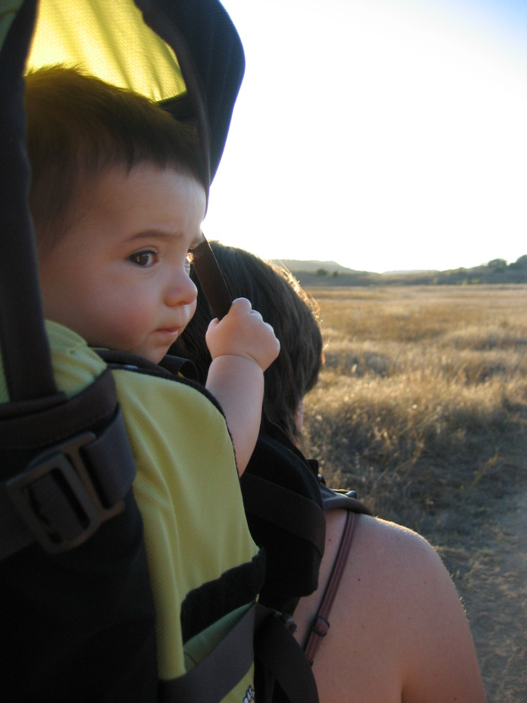 A small child in the outdoors