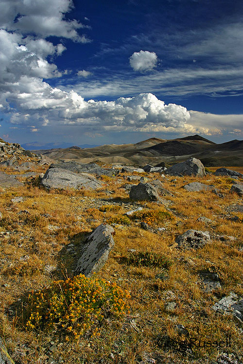The Barcroft Plateau, White Mountains, California