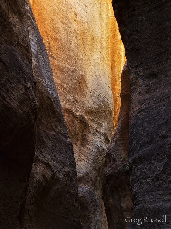 Reflected light in a southern Utah canyon