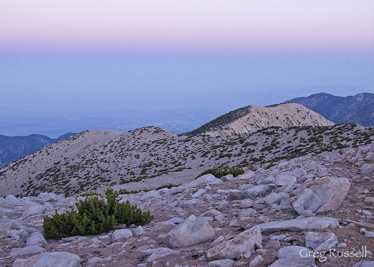 Sunrise on the flanks of San Gorgonio Mountain