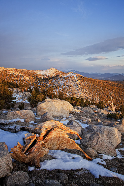 Sunset in the Golden Trout Wilderness