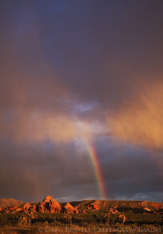 photograph of a rainbow at sunset in the gold butte national monument