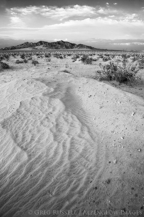 black and white photo of Ship Mountain in Mojave Trails National Monument at sunset