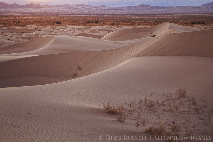 photo of expansive rolling sand dunes at sunset with the sheephole mountains in the distance