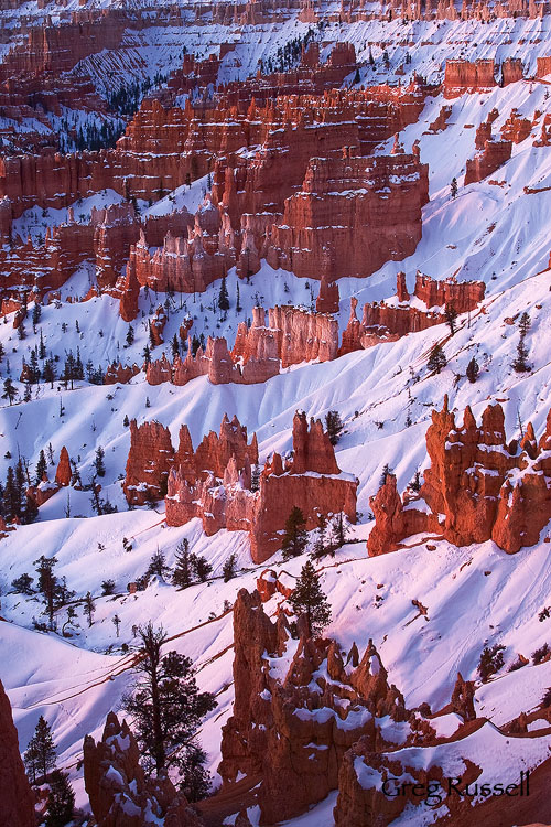 Early morning light on the Amphitheater, Bryce Canyon National Park, Utah