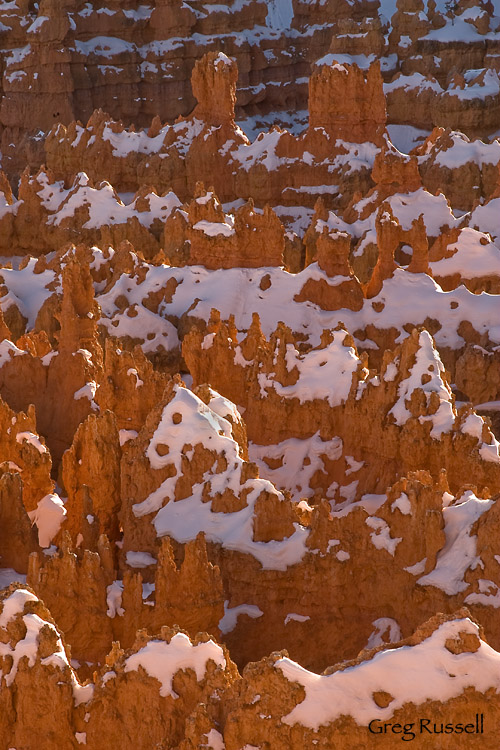 Backlit hoodoos in the Silent City, Bryce Canyon National Park, Utah
