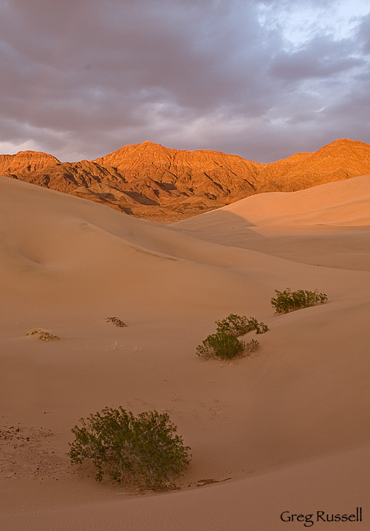 Ibex Dunes at sunset, Death Valley National Park, California