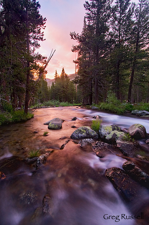 lyell forks of the tuolumne river, yosemite national park, california