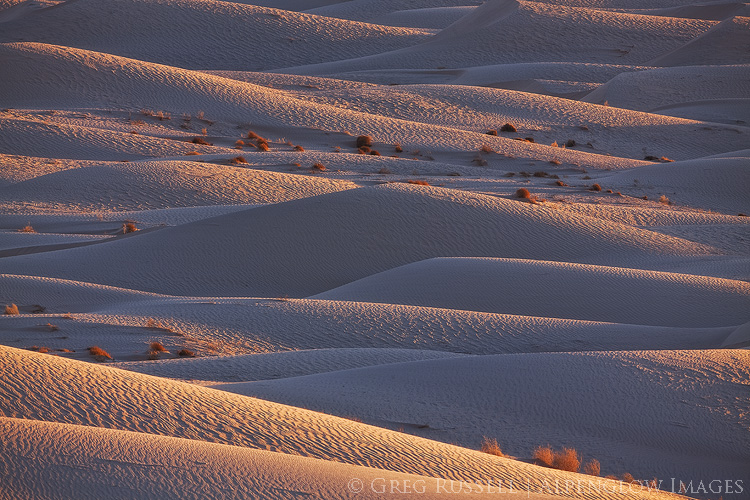 layers of sand dunes at sunset at the cadiz dunes complex within Mojave Trails National Monument